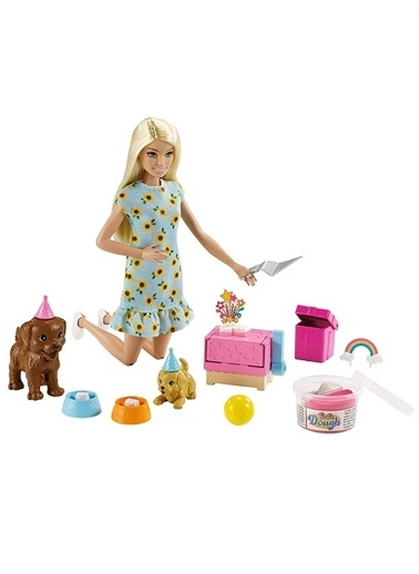Barbie Gxv75 Barbie Ve Köpek Partisi Oyun Seti / Barbie Ve Hayvanları Renkli